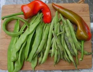 Highlander peppers Rattlesnake and Northeaster beans.